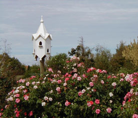 Inland botanic gardens